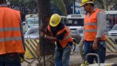 Obreros construcción empleo trabajo