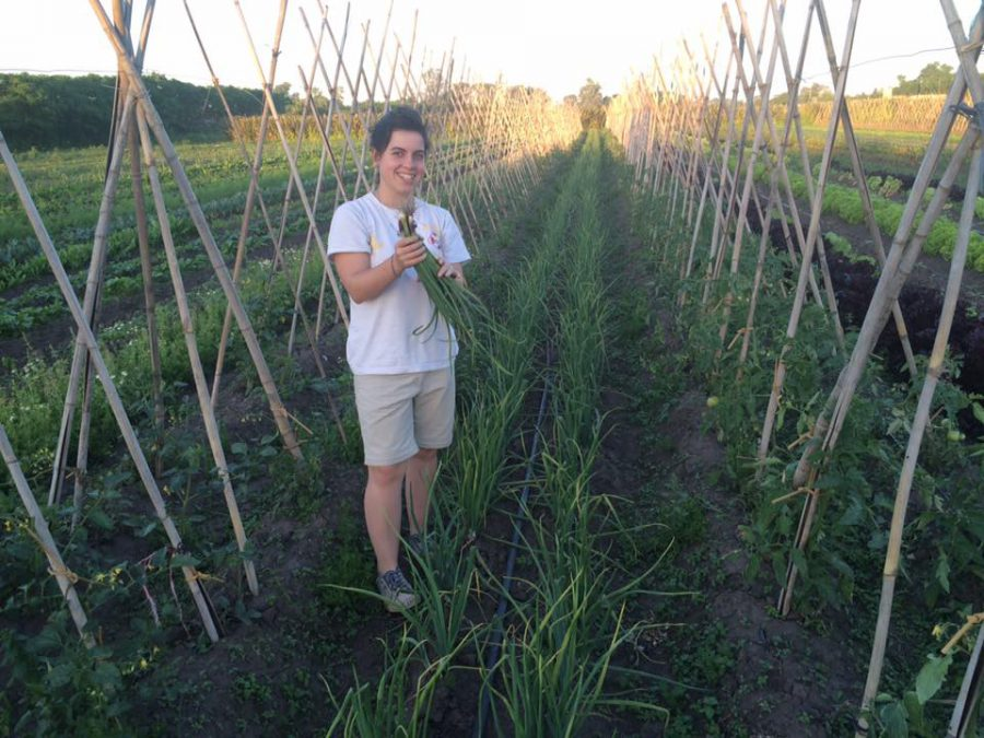 verduras, ecología, agroecológico, Florencio Varela