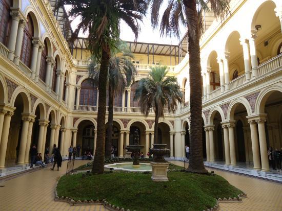 Macri compr una palmera por y la plantar - La casa de las palmeras ...