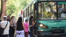 colectivos, ciudad, transporte
